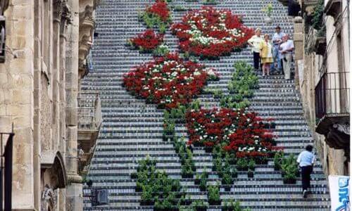 Stairway_to_Heavon_Flower_La_Scala_Sicily