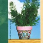 Rosalisa Ritzenhoff - Herbpots 1997