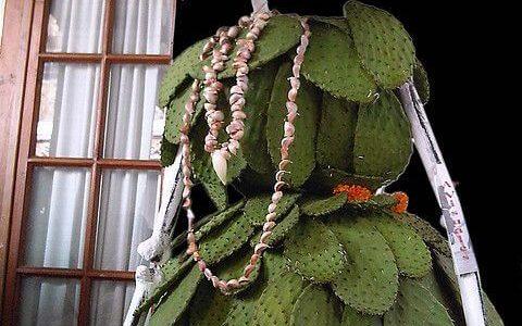 dia_de_los_muertos_catrina_nopales_cactus